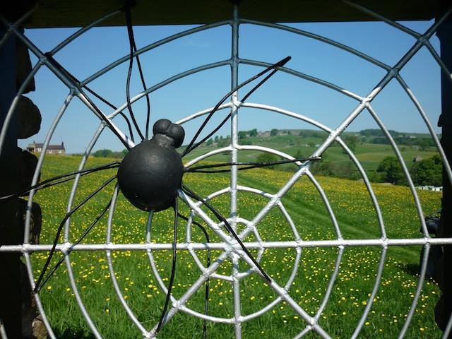 bluebellsandbuttercupsspring2012005-006